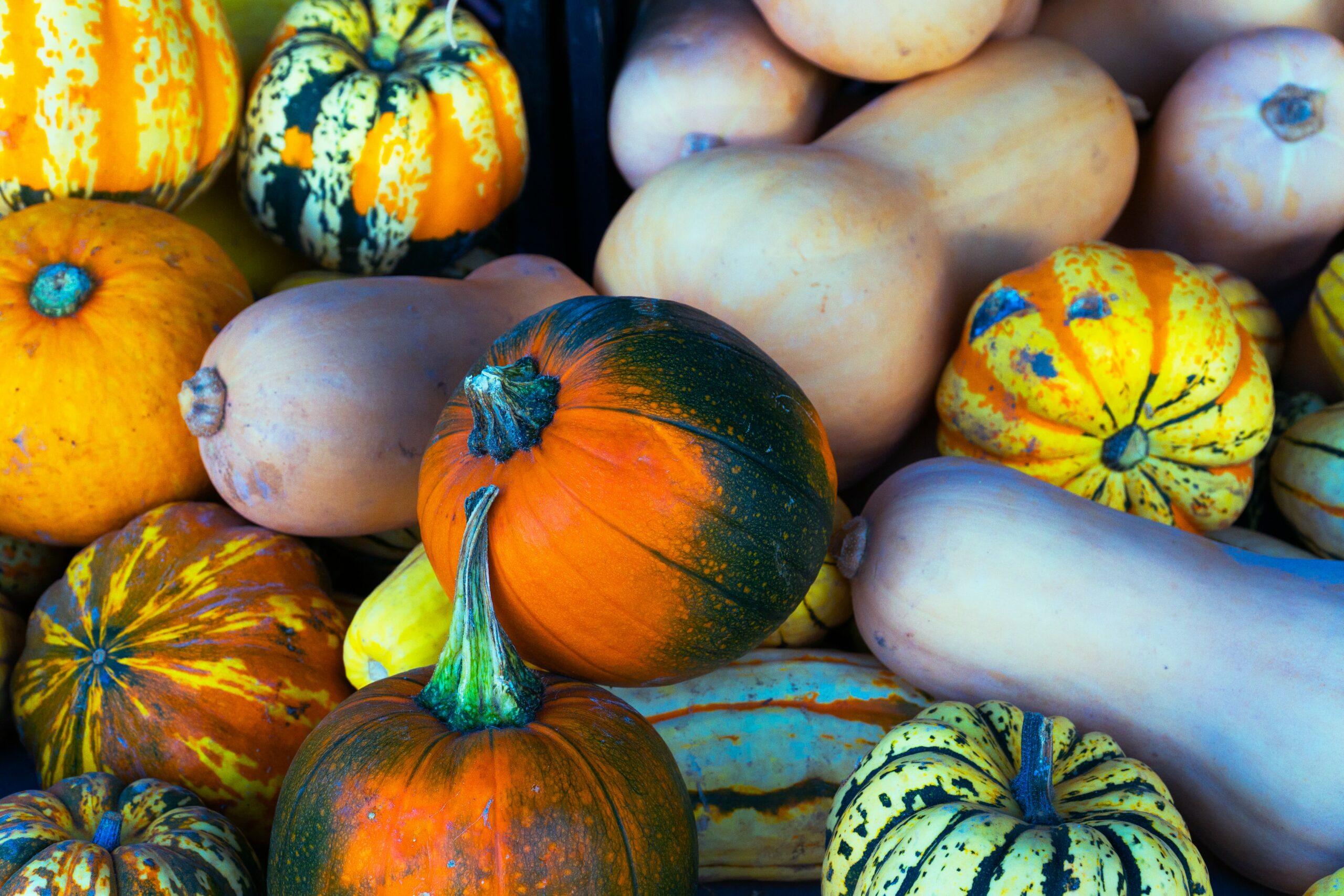 Les fruits et légumes d'hiver à dévorer sans modération