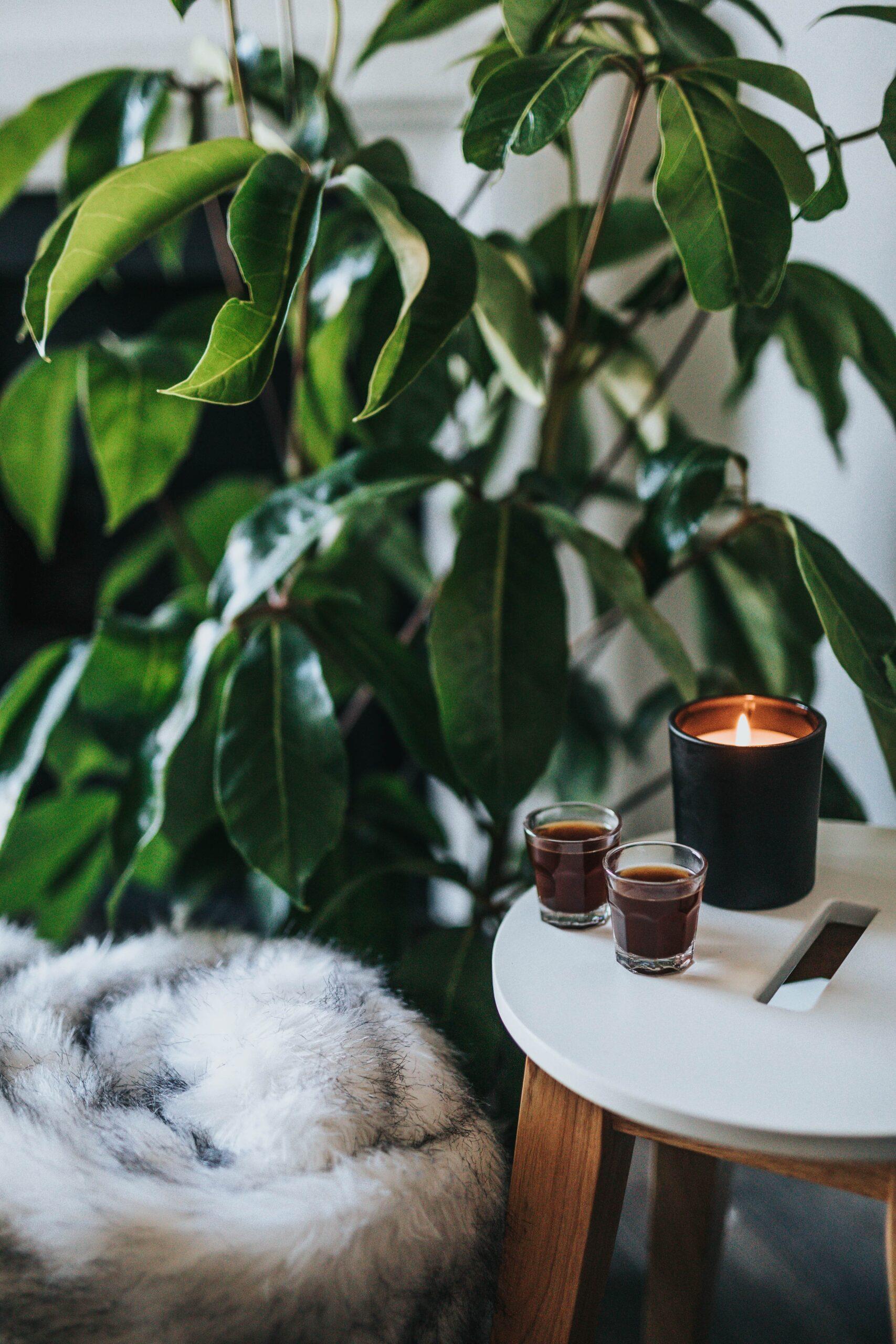 Comment désodoriser et parfumer efficacement son intérieur ?