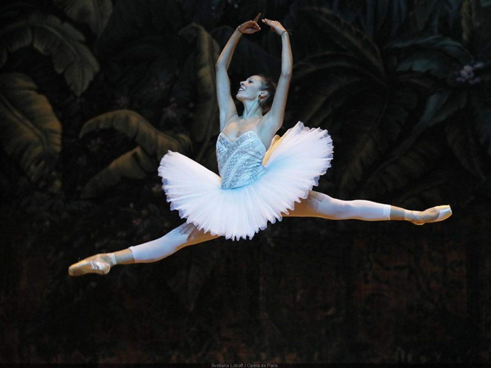 Ballets, opéras, expos… Quatre sites web pour inviter la culture à la maison